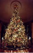 Luxurious Christmas Tree Decorating Ideas For School Decor Luxury Christmas Tree Ideas 10 Luxury Christmas Trees You Will Want