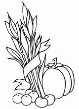 Wheat Coloring Sheaf Apples Pages Sheath Drawing Pumpkin Line Printable Getdrawings Supercoloring Template sketch template