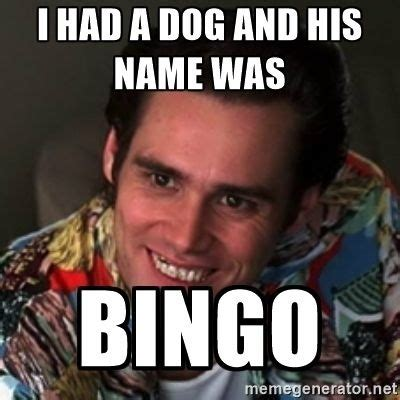 Bingo Memes - ifpa charging fees for tournaments in 2018 pinside forum