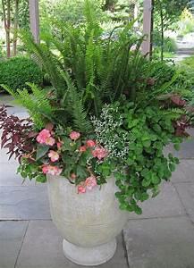 Pot Pour Plante : plante en pot cr er un jardin avec des plantes en pot ~ Teatrodelosmanantiales.com Idées de Décoration