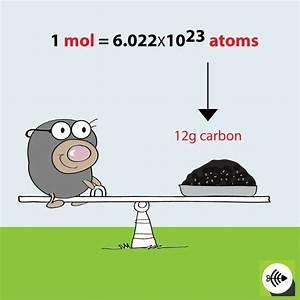 Chemie Mol Berechnen : 517 best chemistry images on pinterest chemistry physics and chemistry classroom ~ Themetempest.com Abrechnung