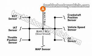 Throttle Position Sensor Wire Diagram 4