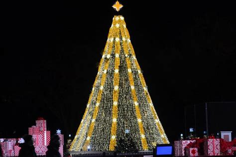 national christmas tree lighting lottery opens for tickets