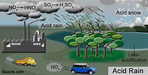 Simple Solutions for Acid Rain You Won't Believe Exist