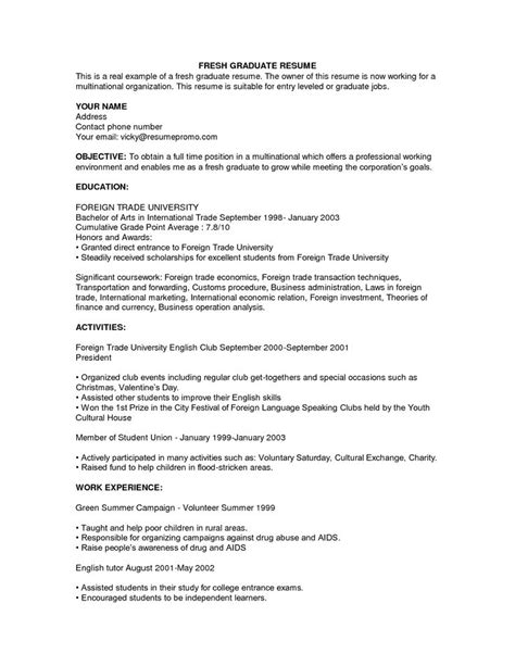 Basic Resume Exles For by Best 25 Exle Of Resume Ideas On Exle Of