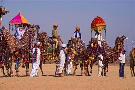 pushkar camel festival wallpaper picture of a