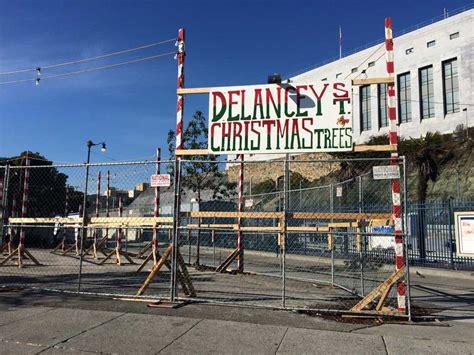 christmas tree lot pops up at safeway parking lot hoodline