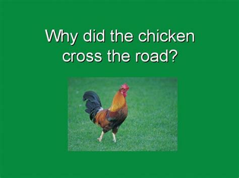 Why Did The Chicken Cross The Road Boreme