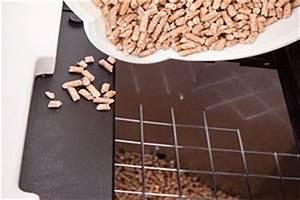 Pelletofen Für Wohnzimmer : pellet kaminofen pelletofen kaufen wichtige kauftipps ~ Bigdaddyawards.com Haus und Dekorationen