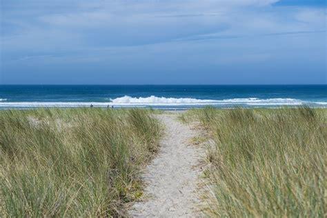 Sand Dune, Rockaway   Beachcombers NW