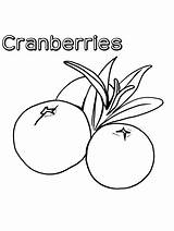 Coloring Cranberries Cranberry Gaddynippercrayons Printable sketch template