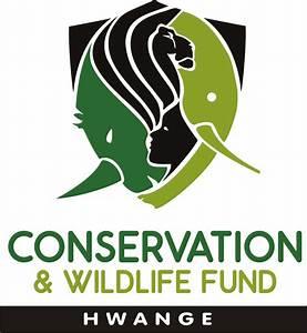 Group Elephant – Conservation & Wildlife Fund