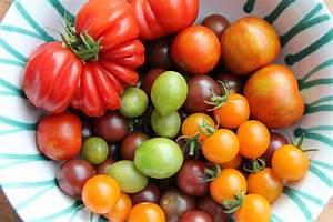 Grüne Tomaten Nachreifen : tipps f r eine gelungene tomatenernte gartenzauber ~ Lizthompson.info Haus und Dekorationen
