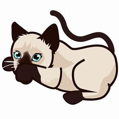 Cat Siamese Clipart Kitten Svg Kittens Transparent