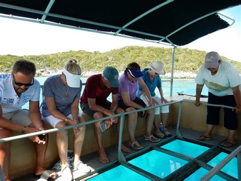 Glass Bottom Boat Bahamas by Glass Bottom Boat Tour In The Bahamas Width Photo
