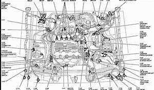 2005 Ford Explorer Wiring Diagram