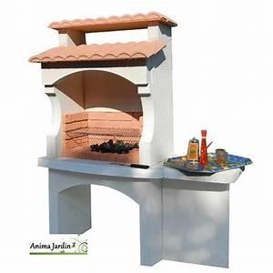Barbecue Charbon De Bois Pas Cher : achat barbecue plancha ~ Dailycaller-alerts.com Idées de Décoration