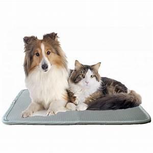 Tapis Pour Chat : tapis maternite flexibed pour chien et chat pet elevage ~ Teatrodelosmanantiales.com Idées de Décoration