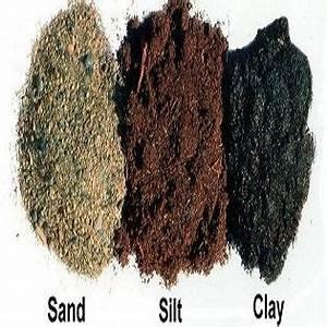 Types Of Soil   Clay, Sandy, Silt, Acidic Loamy, Sandy ...