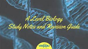 Igcse Grade 11 And Grade 12 Biology Study Notes And