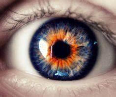 1000+ ideas about Eye Color on Pinterest | Star Hair, Mary ...