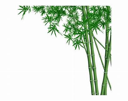 Bamboo Forest Transparent Clip Clipart Cliparts Library