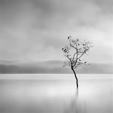 surreal nature photography  george digalakis