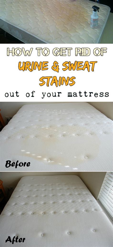 how to remove urine stains from mattress 19 tips to learn how to get stains out