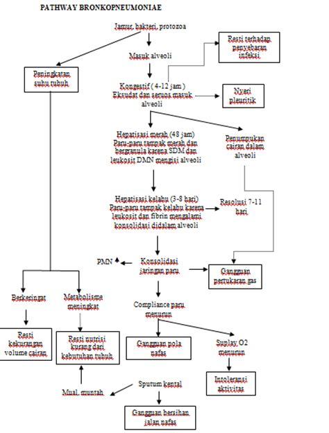 Masalah Kehamilan Pdf Pathways Pneumonia World Health
