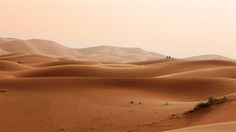 wallpaper desert sand  nature