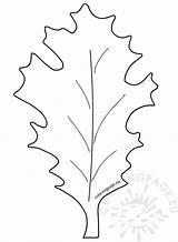 Leaf Oak Leaves Autumn Coloring sketch template