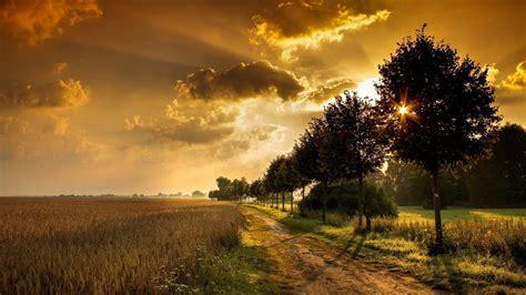 1600x900 Sunset Field Road Hd Wallpaper Hd Desktop