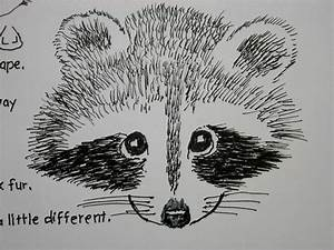 Raccoon Face Drawing Simple Raccoon Drawing Racoons