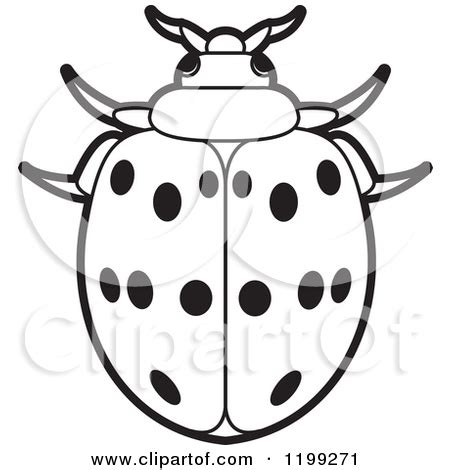 beetle clipart black and white black beetle clipart clipground