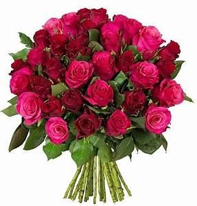 Begleitpflanzen Für Rosen : rosenstrau f r 21 strau mit 34 rosen ~ Orissabook.com Haus und Dekorationen