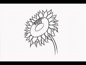 How to Draw Different Kinds of Flowers (speed drawing ...