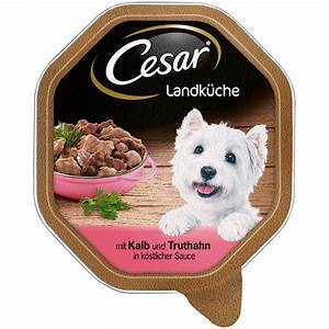 Hundefutter Auf Rechnung Bestellen : cesar landk che mini filets in sauce hundefutter von cesar g nstig bestellen ~ Themetempest.com Abrechnung