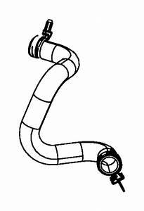 Jeep Wrangler Radiator Coolant Hose  Lower   3 8 Liter
