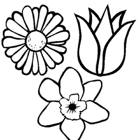 coloring pages for adults flowers BestAppsForKids com