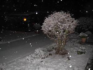 Wann Fällt Der Erste Schnee : winter 2017 bilder vom ersten schnee im neuen jahr ~ Lizthompson.info Haus und Dekorationen