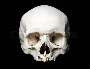 Real Human Skull  Upper Half  With Black Background
