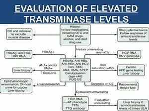 Liver Enzymes Levels Chart Interpretation Of Liver Function Tests