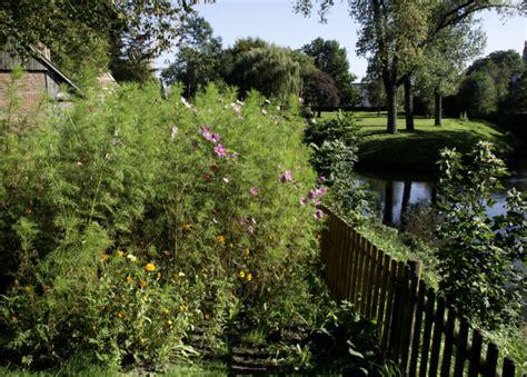 Mehr Privatsphaere Im Garten by Sichtschutz F 252 R Privatsph 228 Re Im Garten Zaun Shop De