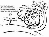 Owl Coloring Poet Pages Print sketch template