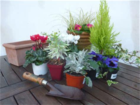 pot 233 es et jardini 232 res fleuries pour l hiver