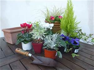Plantes D Hiver Extérieur Balcon : jardiniere d hiver pour balcon pivoine etc ~ Nature-et-papiers.com Idées de Décoration