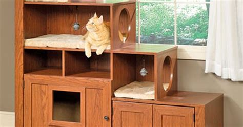 The Bookcase Climber, Bed And