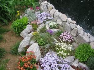 Die Schönsten Steingärten : steingarten teich pflanzen zwischen steinen primeln garteninspiration pinterest w nde ~ Bigdaddyawards.com Haus und Dekorationen