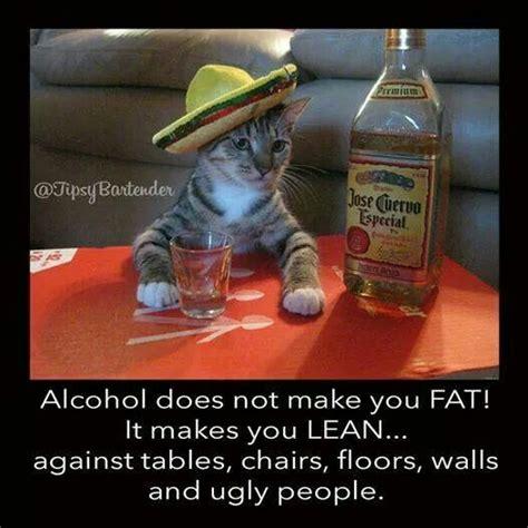 Funny Alcohol Memes - alcohol meme humor pinterest