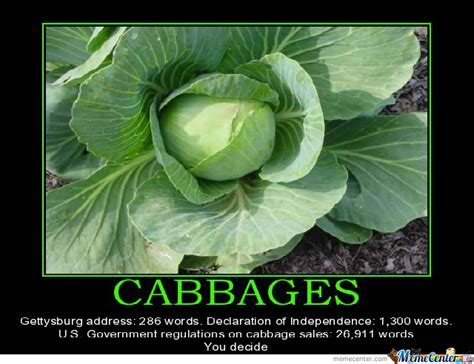 Cabbage Regulation by grandthefteverything   Meme Center